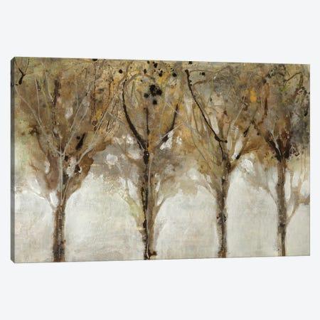 Seeing The Light Canvas Print #JAR176} by Liz Jardine Canvas Wall Art