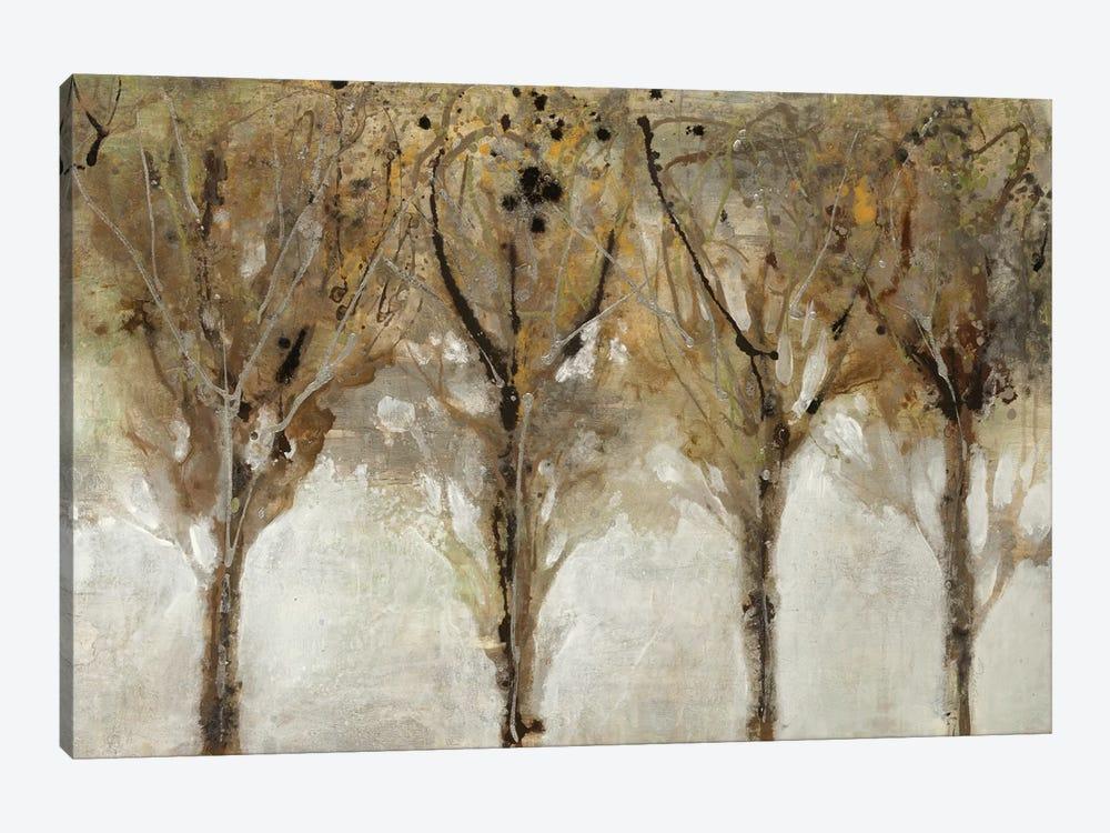 Seeing The Light by Liz Jardine 1-piece Canvas Art