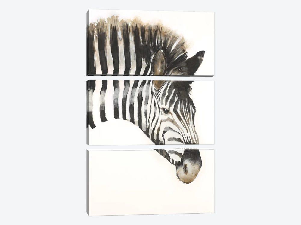 Zebra Stripes by Liz Jardine 3-piece Canvas Print