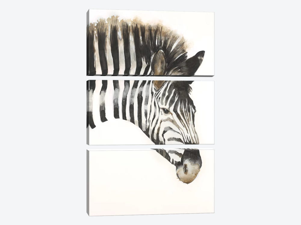 Zebra Stripes by Liz Jardine 3-piece Canvas Print