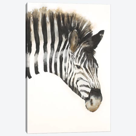 Zebra Stripes Canvas Print #JAR184} by Liz Jardine Art Print
