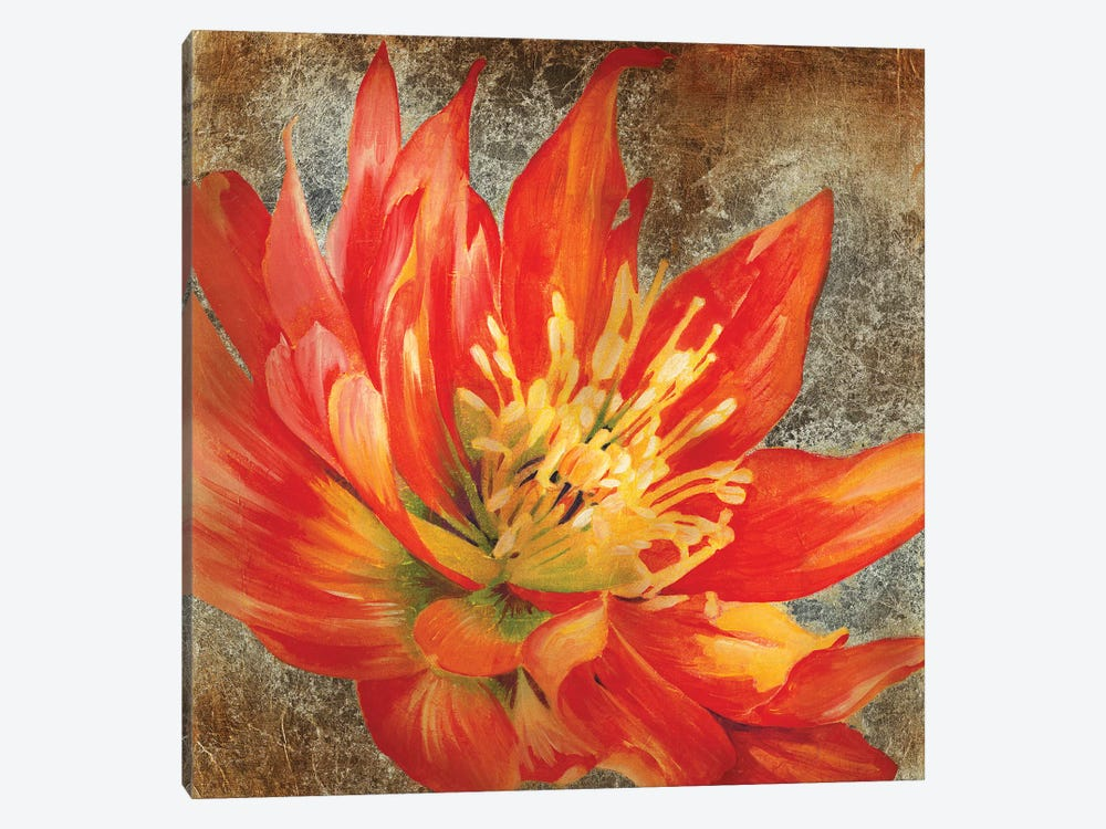 Antique Botanicals I by Liz Jardine 1-piece Canvas Wall Art