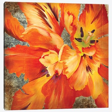 Antique Botanicals II Canvas Print #JAR188} by Liz Jardine Canvas Wall Art