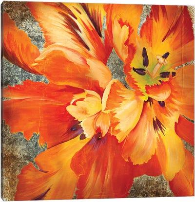 Antique Botanicals II Canvas Art Print