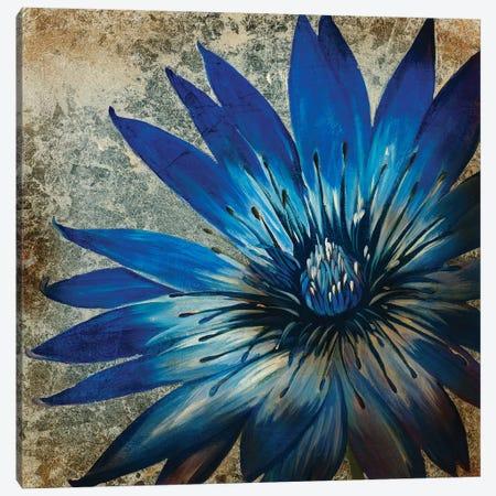 Antique Botanicals III Canvas Print #JAR189} by Liz Jardine Canvas Art
