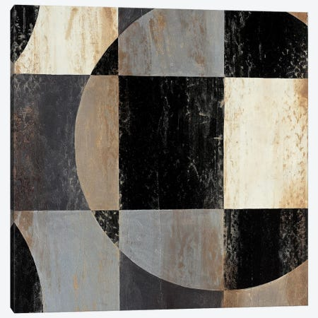 Interlocking Circles III Canvas Print #JAR213} by Liz Jardine Canvas Wall Art