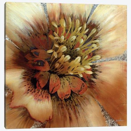 Silver Botanicals III Canvas Print #JAR236} by Liz Jardine Canvas Art Print