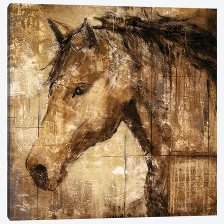 Cavalier 3-Piece Canvas #JAR23} by Liz Jardine Canvas Art Print