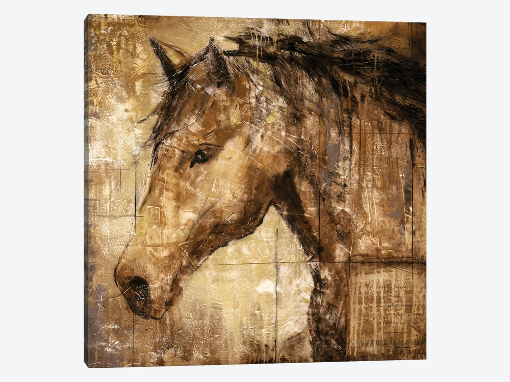 Cavalier by Liz Jardine 1-piece Canvas Artwork