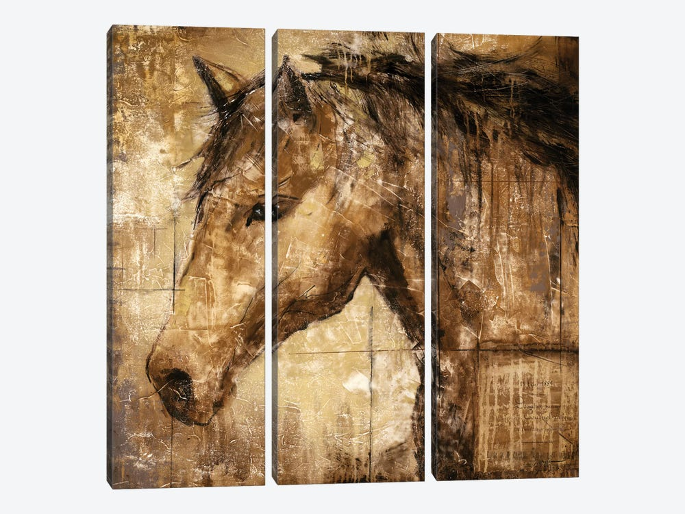 Cavalier by Liz Jardine 3-piece Canvas Art