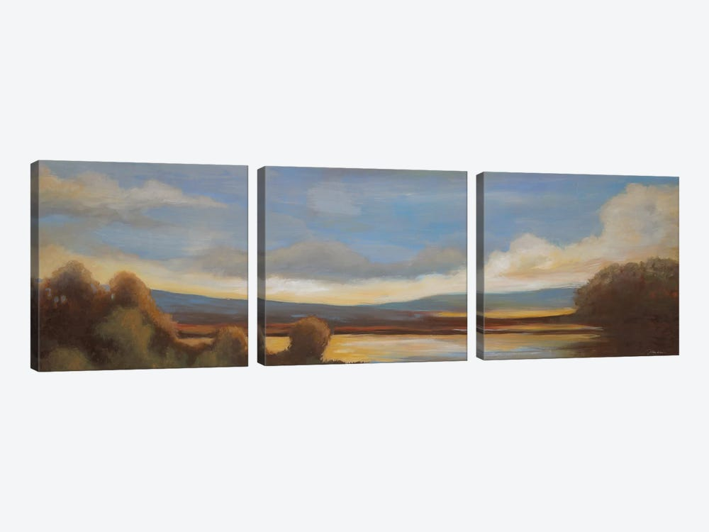 Somewhere in The Distance by Liz Jardine 3-piece Canvas Print