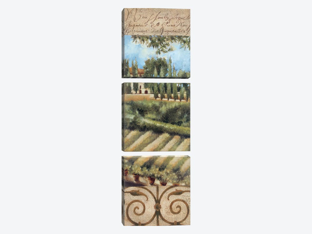 Tuscany Villa I by Liz Jardine 3-piece Canvas Art