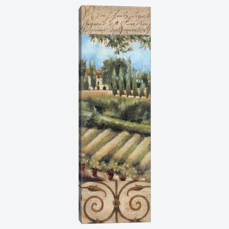 Tuscany Villa I 3-Piece Canvas #JAR249} by Liz Jardine Art Print