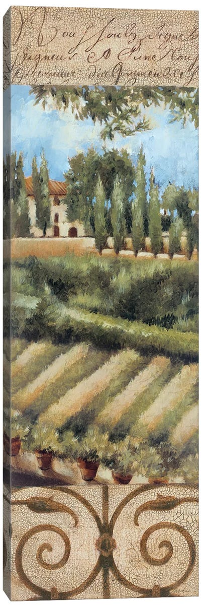 Tuscany Villa I Canvas Art Print