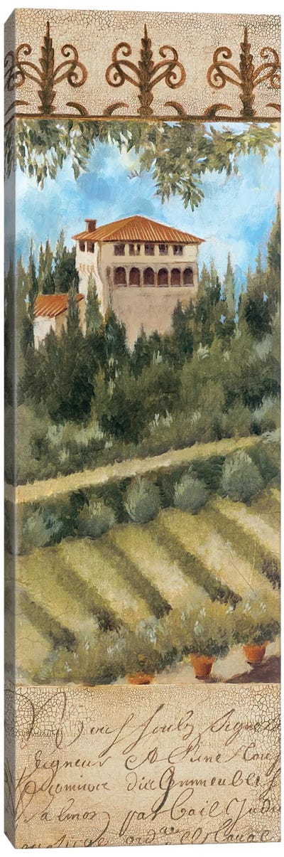 Tuscany Villa II Canvas Art Print