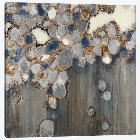 Indigo Oyster Shells Canvas Print #JAR262} by Liz Jardine Canvas Print