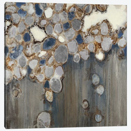 Indigo Oyster Shells 3-Piece Canvas #JAR262} by Liz Jardine Canvas Print