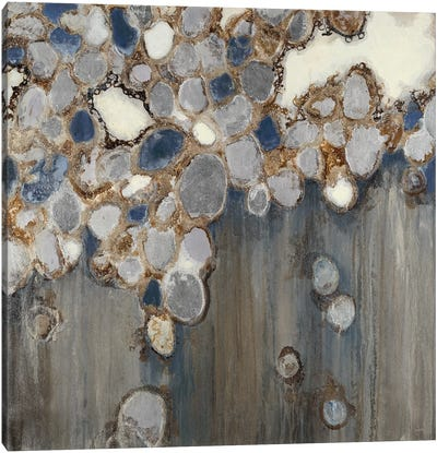 Indigo Oyster Shells Canvas Art Print