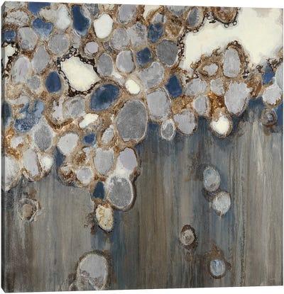 Indigo Oyster Shells Canvas Art Print