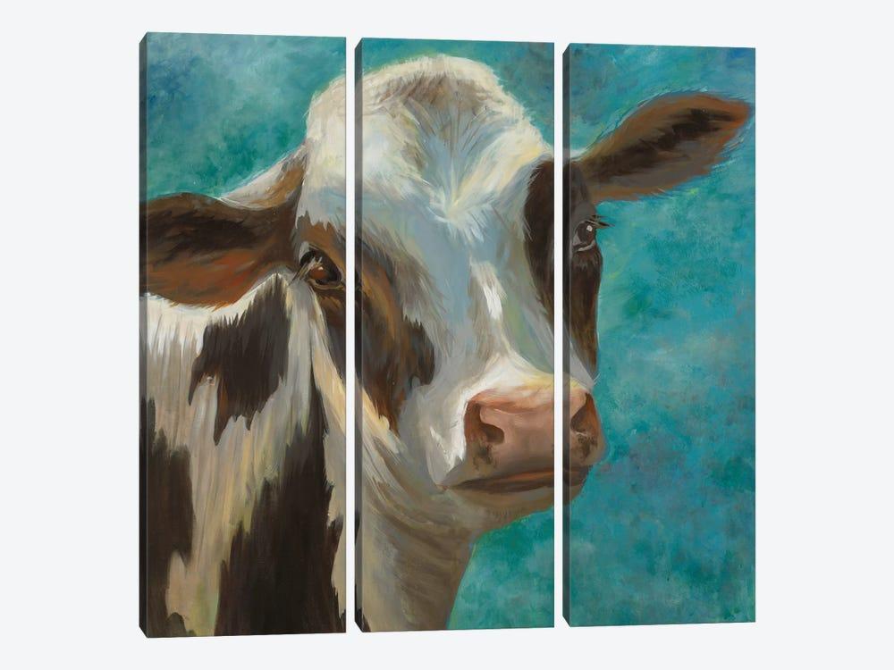 Rise & Shine V by Liz Jardine 3-piece Canvas Wall Art