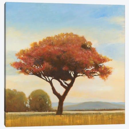 At Day's End Canvas Print #JAR282} by Liz Jardine Art Print
