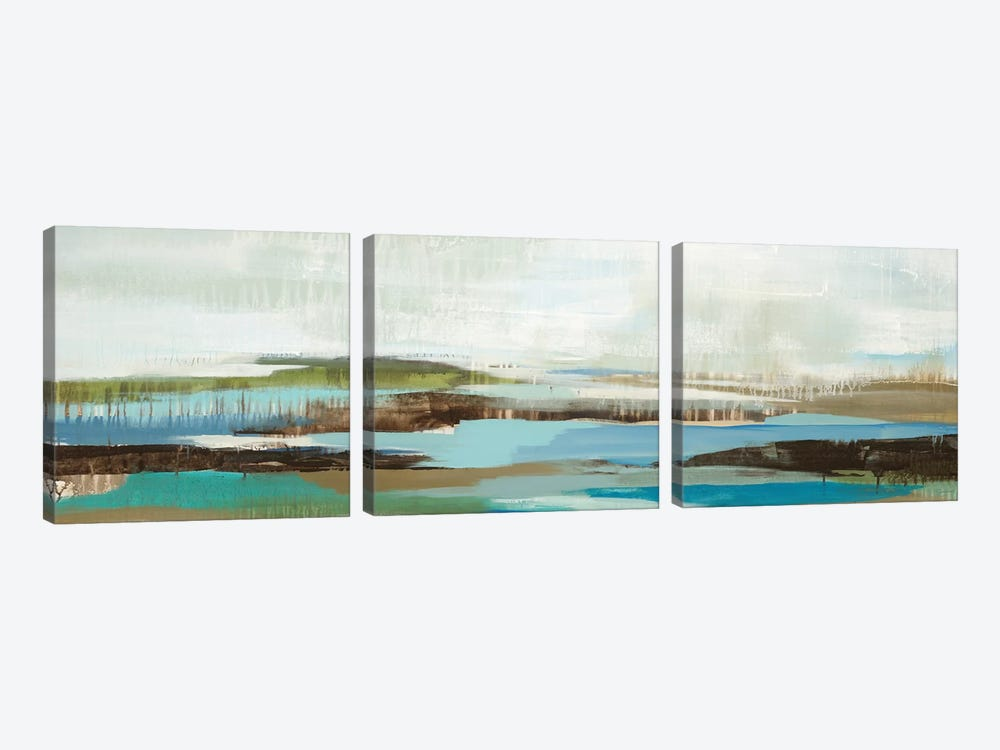 Back Beach Road by Liz Jardine 3-piece Canvas Wall Art