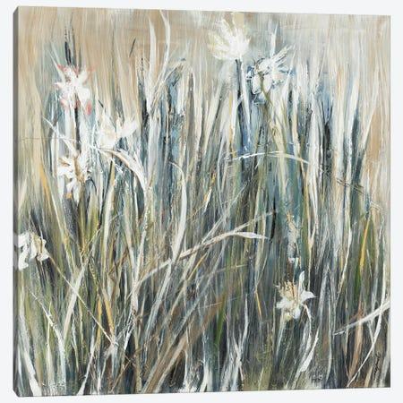 Garden Gems Canvas Print #JAR288} by Liz Jardine Canvas Print