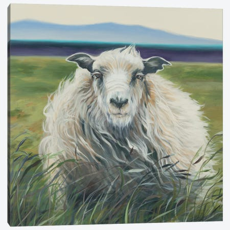 Homespun (Lamb) 3-Piece Canvas #JAR295} by Liz Jardine Canvas Art Print