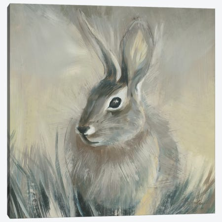 Wild Hare II 3-Piece Canvas #JAR313} by Liz Jardine Art Print