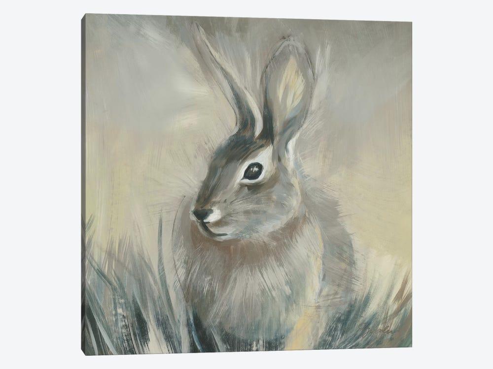 Wild Hare II by Liz Jardine 1-piece Canvas Artwork