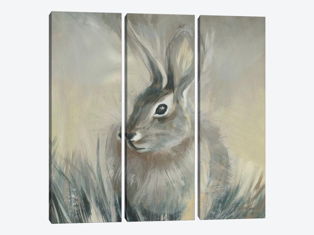 Wild Hare II by Liz Jardine 3-piece Canvas Artwork