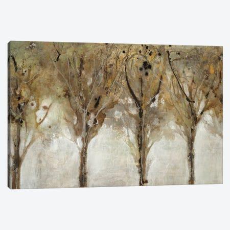 Seeing the Liight Canvas Print #JAR328} by Liz Jardine Canvas Wall Art