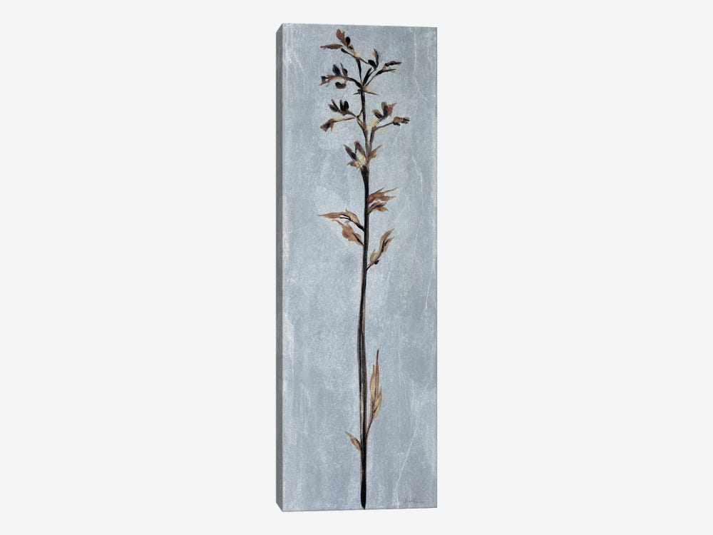 Cool Botanicals III by Liz Jardine 1-piece Canvas Wall Art