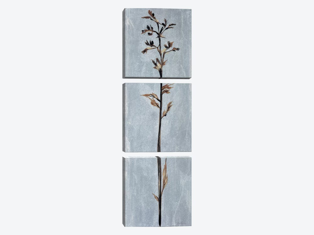 Cool Botanicals III by Liz Jardine 3-piece Canvas Artwork