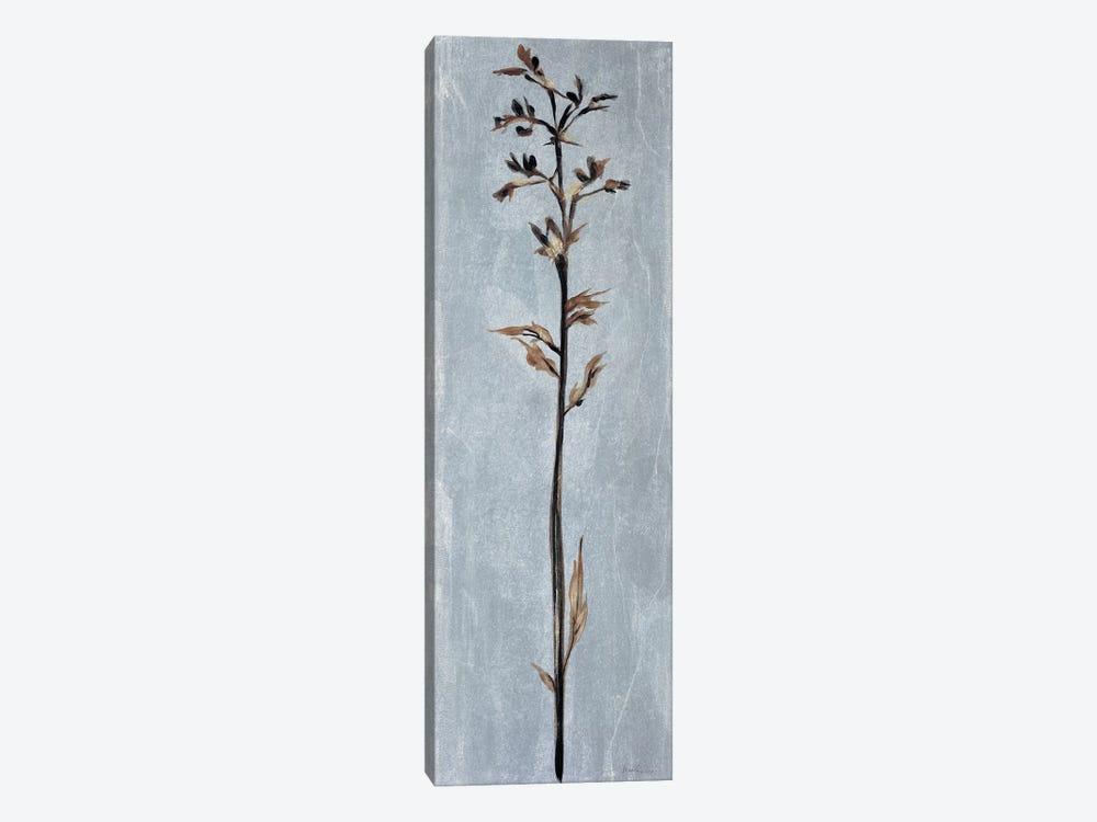 Cool Botanicals III by Liz Jardine 1-piece Canvas Wall Art