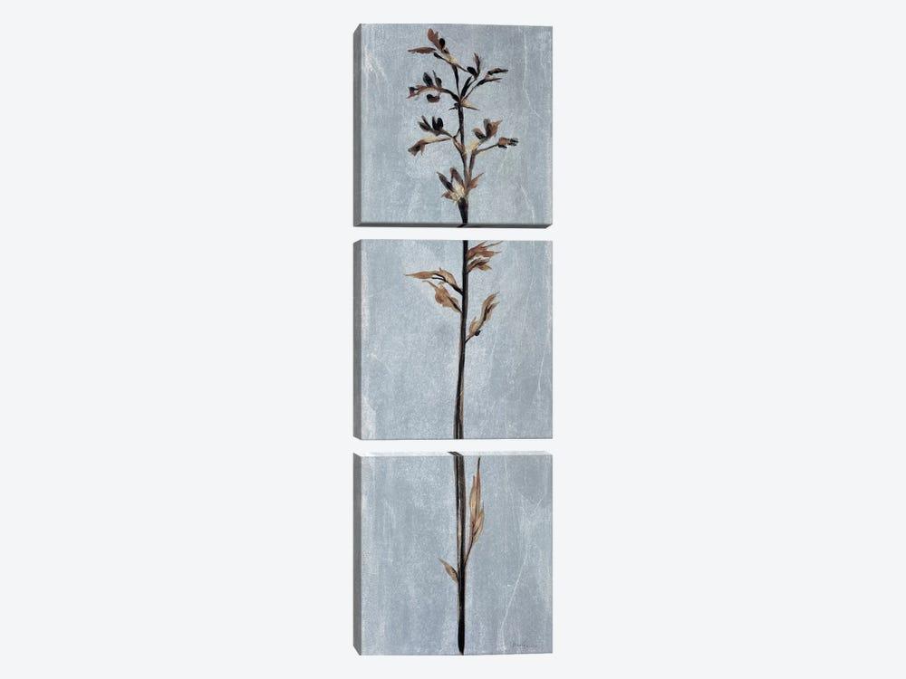 Cool Botanicals III by Liz Jardine 3-piece Canvas Artwork