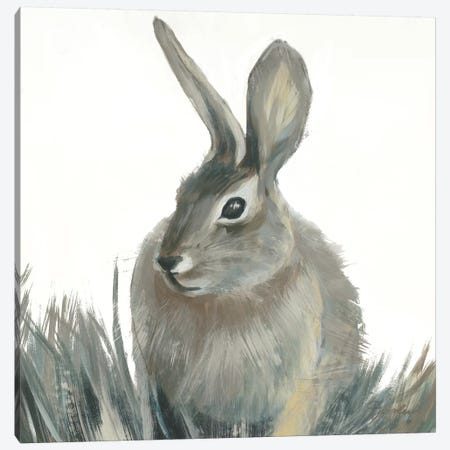 Wild Hare II V1 Canvas Print #JAR333} by Liz Jardine Canvas Art Print