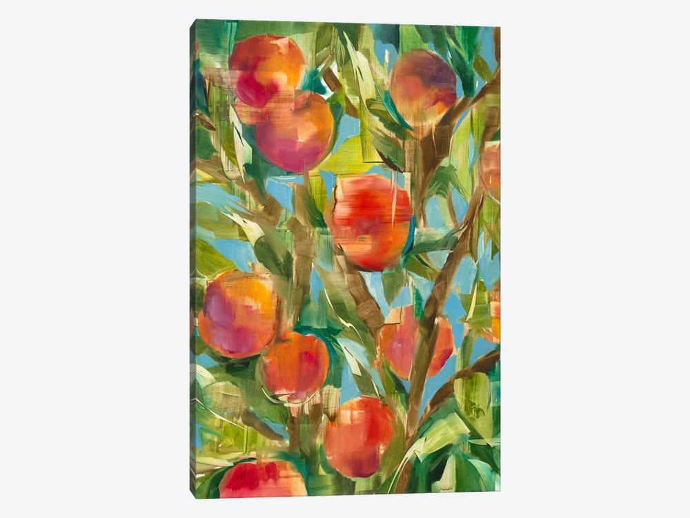 Just Peachy by Liz Jardine 1-piece Canvas Wall Art