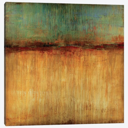 Desert Sunset Canvas Print #JAR38} by Liz Jardine Canvas Artwork