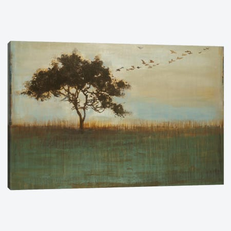 A Fleeting Glimpse Canvas Print #JAR3} by Liz Jardine Art Print