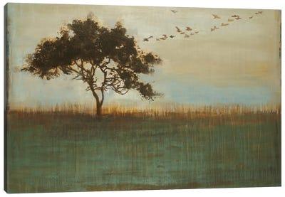 A Fleeting Glimpse Canvas Art Print