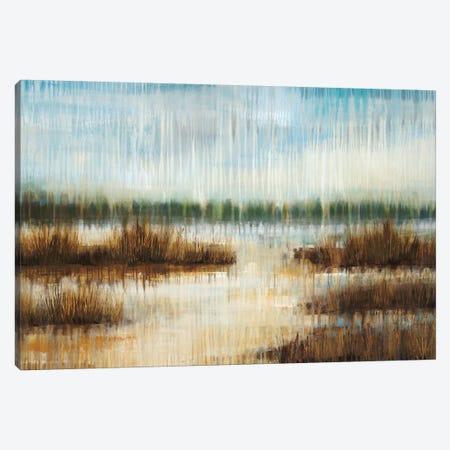 Early Morning Mist Canvas Print #JAR41} by Liz Jardine Canvas Print