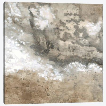 Earthen I Canvas Print #JAR42} by Liz Jardine Canvas Print