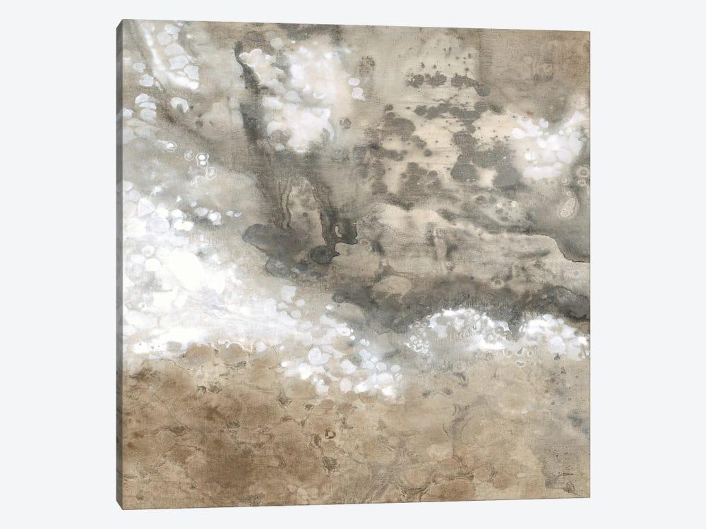 Earthen I by Liz Jardine 1-piece Canvas Print