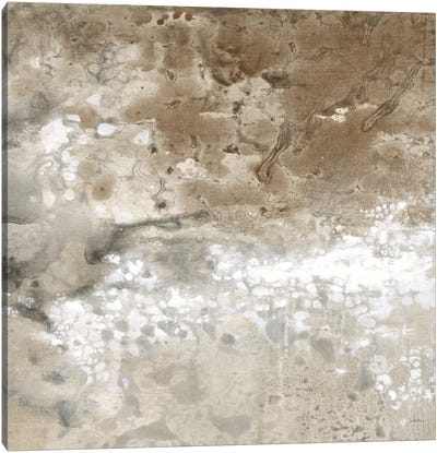 Earthen II Canvas Art Print