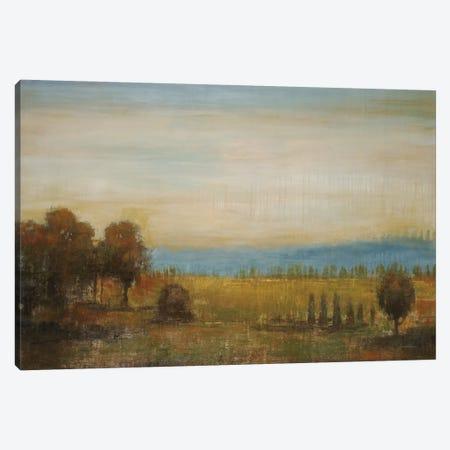 Golden Meadow Canvas Print #JAR62} by Liz Jardine Canvas Art Print