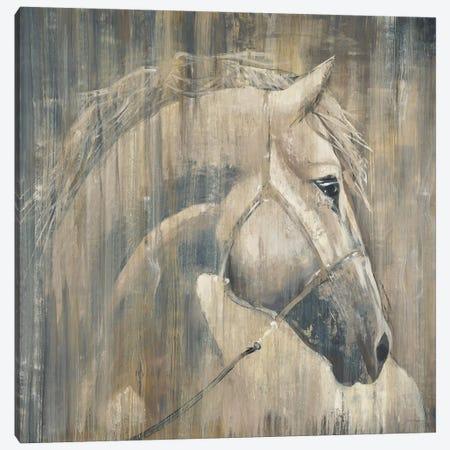 His Majesty Canvas Print #JAR65} by Liz Jardine Canvas Artwork