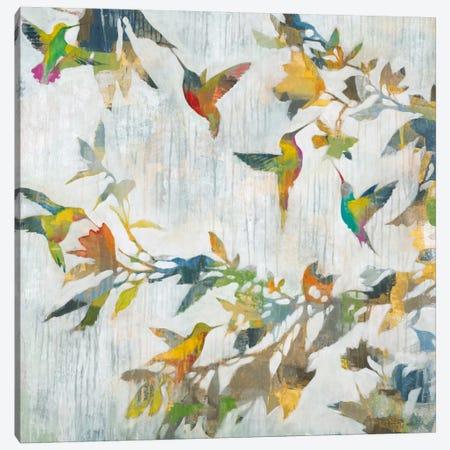 Aerial Dance Canvas Print #JAR7} by Liz Jardine Canvas Wall Art