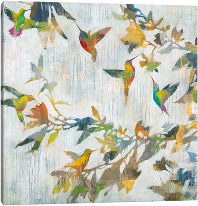 Aerial Dance Canvas Art Print