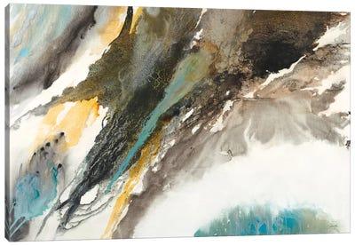 Liquid Mercury Canvas Art Print
